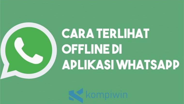 Cara Terlihat Offline di WhatsApp