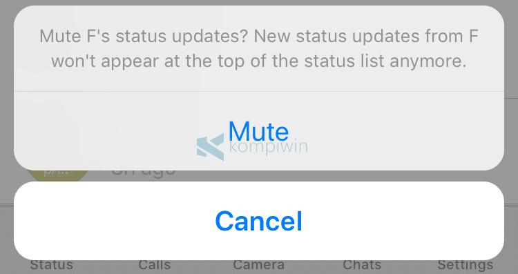 Cara Mute/Matikan Status/Story WhatsApp Orang Lain di iPhone 2