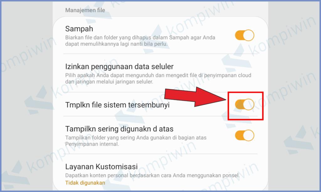 Aktifkan Fitur Tampilkan File Tersembunyi