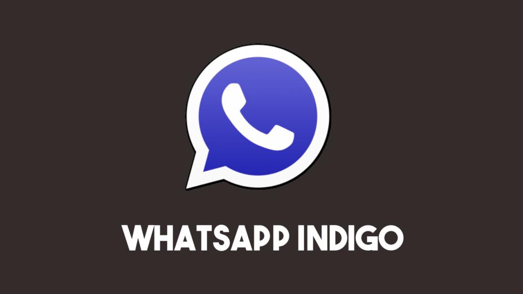 Logo Whatsapp Indigo Logo Whatsapp Indigo