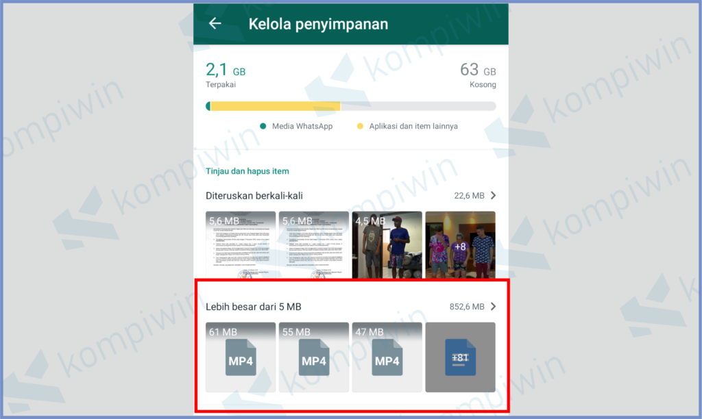 Manajemen Penyimpanan Bawaan Whatsapp