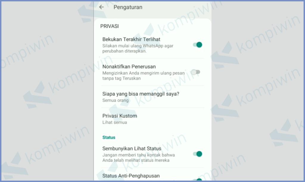 Pengaturan Privasi Whatsapp Aero