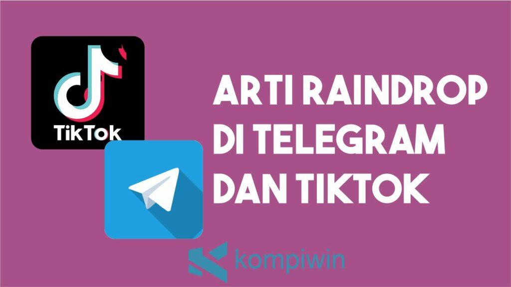 Arti Raindrop di Telegram dan TikTok