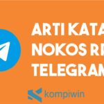 Arti Kata Nokos RP Di Telegram