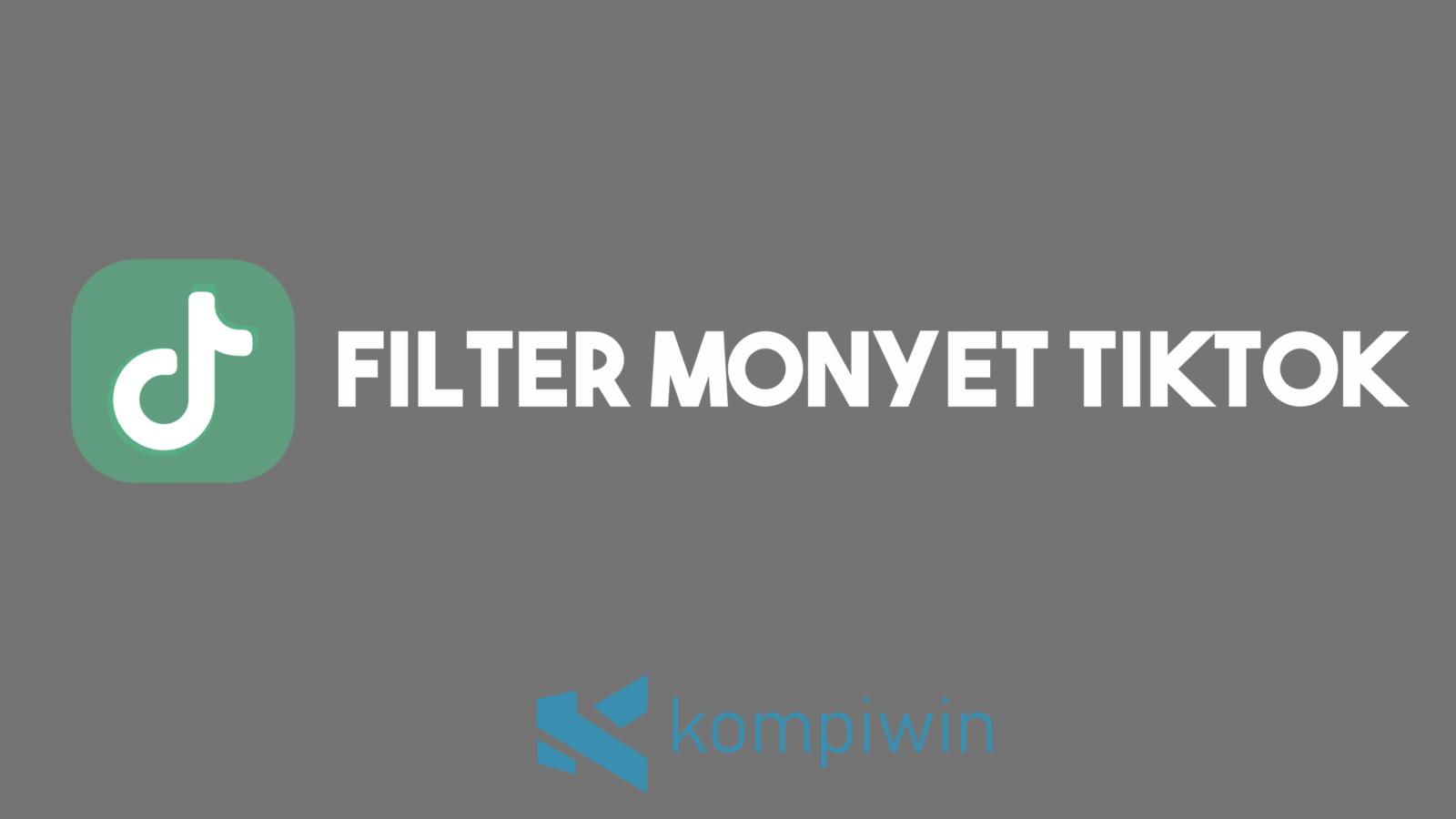 Filter Monyet Tiktok 7