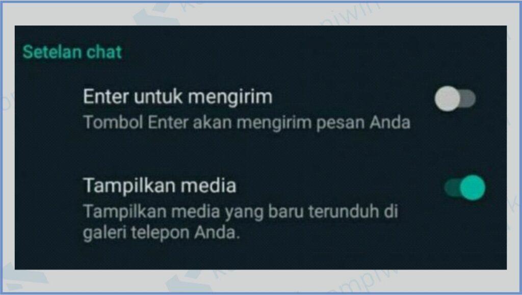 Aktifkan Tampilkan Media - Cara Mengatasi Foto Dari WhatsApp Tidak Muncul di Galeri
